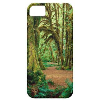 Forest Hall Of Mosses Olympic iPhone 5 Cases