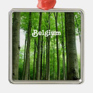 Forest in Belgium Ornaments