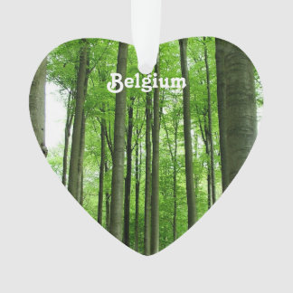 Forest in Belgium Ornament