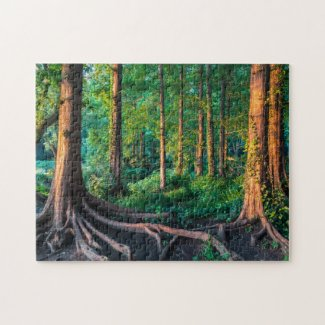 Forest in Summer Jigsaw Puzzle
