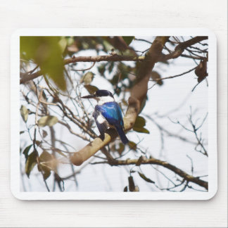 FOREST KINGFISHER RURAL QUEENSLAND AUSTRALIA MOUSE PAD