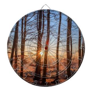 Forest Landscape Sun Trees Nature Wood Winter Dartboard