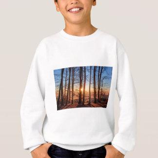 Forest Landscape Sun Trees Nature Wood Winter Sweatshirt