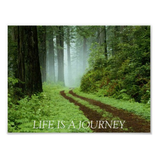 Forest, LIFE IS A JOURNEY Poster