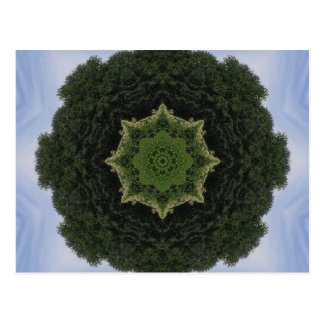 Forest Mandala Postcard