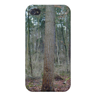 Forest mossy ground and tree trunks iPhone 4/4S case
