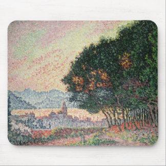 Forest near St. Tropez, 1902 Mouse Mat