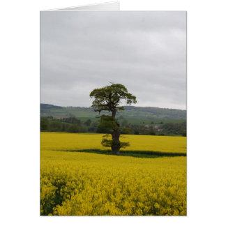Forest Oak Card