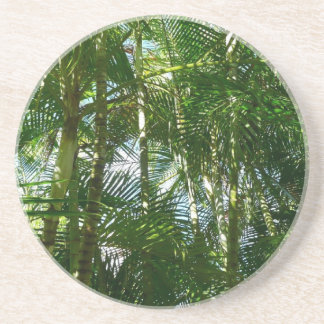 Forest of Palm Trees Tropical Green Coasters
