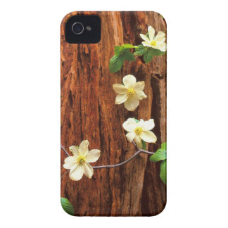 Forest Pacific Dogwood Redwood iPhone 4 Case