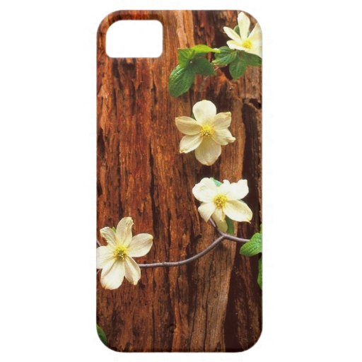 Forest Pacific Dogwood Redwood iPhone 5 Covers