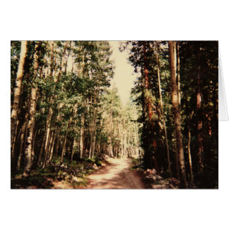 Forest Path Card