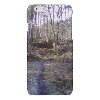 Forest Path in the Forrest iPhone 6 Plus Case