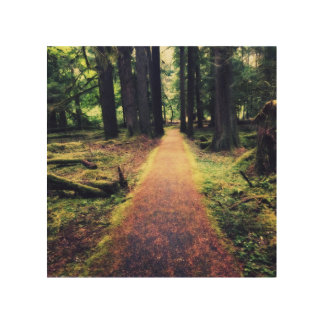 Forest Path Wood Wall Art