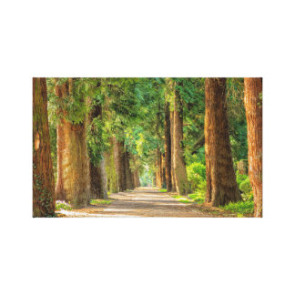Forest pathway print