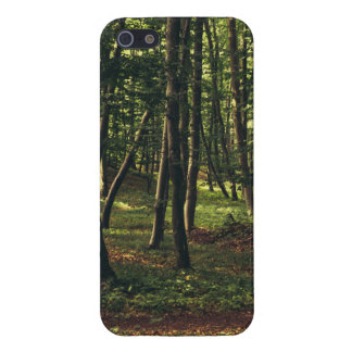 Forest Photograph, Nature Landscape Photography Case For iPhone 5/5S