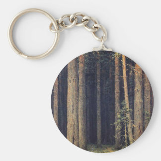 forest-pictures-7 key chain