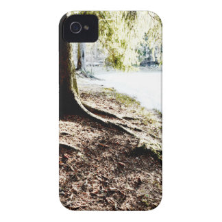 Forest Pond Case-Mate iPhone 4 Cases