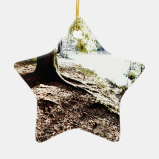 Forest Pond Christmas Ornament