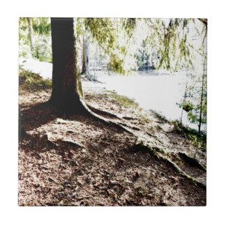 Forest Pond Tile
