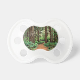 Forest Prairie Redwoods Park Pacifier
