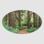 Forest Prairie Redwoods Park Oval Stickers