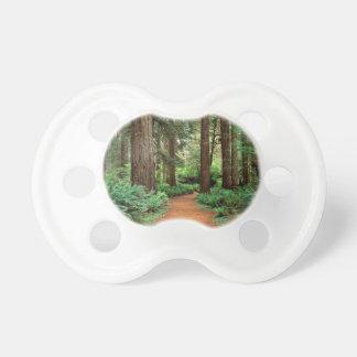 Forest Prairie Redwoods Park Pacifier