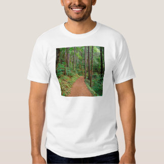Forest Quiet Trail Columbia River Gorge T Shirts