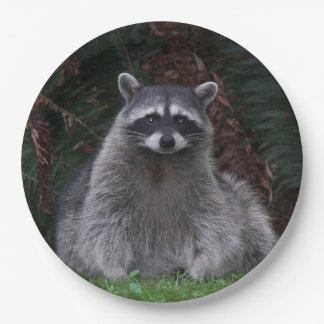 Forest Raccoon Photo Paper Plate