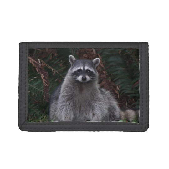 Forest Racoon Photo Trifold Wallets