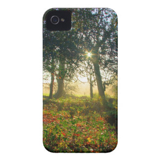 Forest Rainbow iPhone 4 Cover
