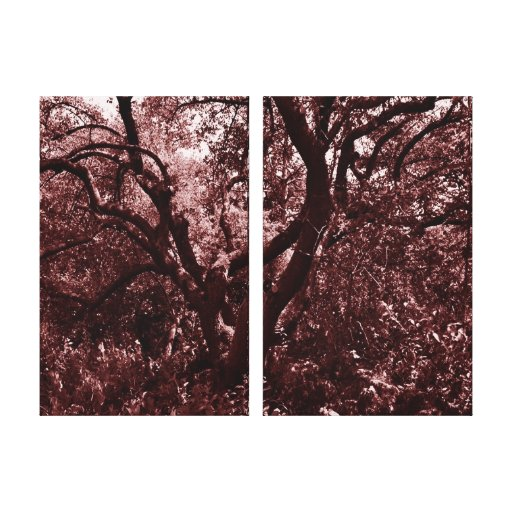Forest red gallery wrapped canvas