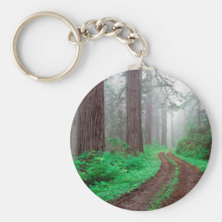 Forest Redwood Key Ring