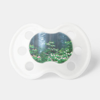 Forest Redwoods Blooming Rhododendrons Pacifier