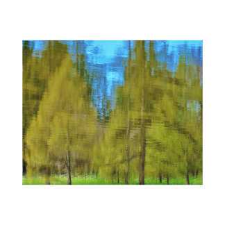 Forest Reflections Stretched Canvas Prints