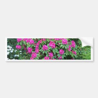 Forest Rhododendron Bumper Sticker