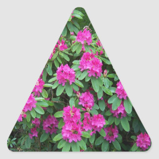 Forest Rhododendron Triangle Sticker