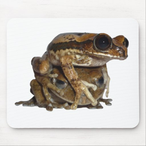 Forest riser frog duo mouse pad