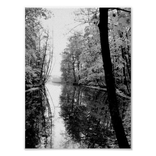 Forest River Black And White Poster