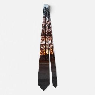 Forest Scene Tie