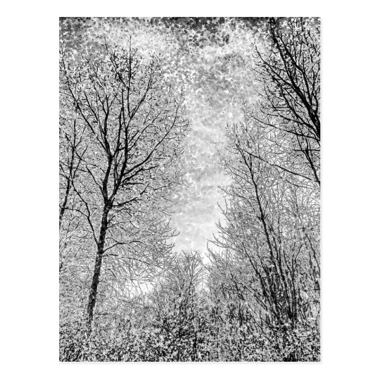 Forest Snow Art Postcard