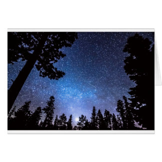 Forest Star Gazing An Astronomy Delight Card