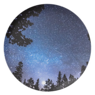 Forest Star Gazing An Astronomy Delight Plates