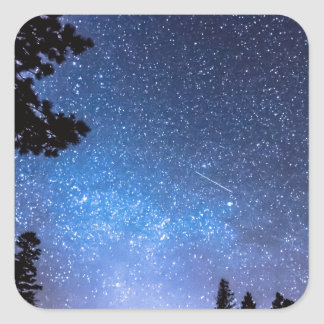 Forest Star Gazing An Astronomy Delight Square Sticker
