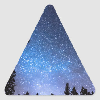 Forest Star Gazing An Astronomy Delight Triangle Sticker