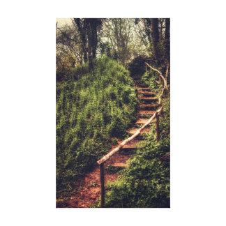 Forest Steps Canvas Prints