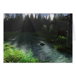 Forest Stream Card
