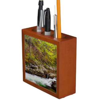 Forest Stream In Great Smoky Mountains Desk Organiser