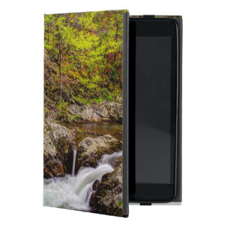 Forest Stream In Great Smoky Mountains iPad Mini Cover