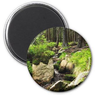 forest stream 6 cm round magnet